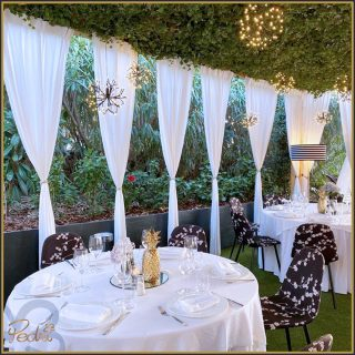 We can't wait for you to spend an enchanted evening in our charming garden ... we are getting ready to satisfy your palates, summer 2021 is approaching ❣️  #pedrigardenrestaurant #pedrigarden #portocervo #promenadeduport #sardegna #sardinia #sardiniaexperience #sardiniarestaurant #restaurant #gardenrestaurant #summer2021loading